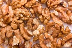 Walnuts. Closeup of ripe walnuts on white background Stock Image
