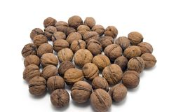 Walnuts. On the white background Stock Images