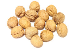 Walnuts. On a white background royalty free stock image