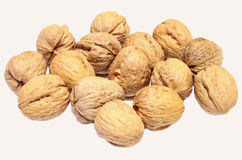 Walnuts. On a white background stock photos
