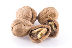Walnuts. Stock Image
