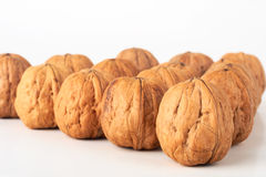 Walnuts. Group of unshelled walnuts isolated Stock Photos