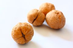Walnuts. Some walnuts on the white backgrounds Stock Image