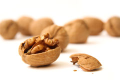 Free Walnuts Royalty Free Stock Photography - 14392577