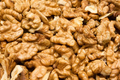Free Walnuts Stock Images - 16221994
