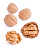 Walnuts. Broken walnut with the kernel Stock Images