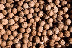 Walnuts. Against the background of a lot of useful and tasty walnuts close-up stock images