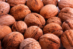 Walnuts. Nuts fruits macro photo walnuts harvest Royalty Free Stock Photos