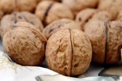 Walnuts. Lots of walnuts on detail Stock Photo