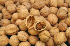 Walnuts. Nut, shell, a pack of walnuts stock images