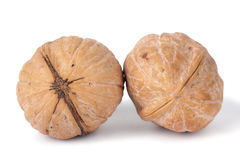 Walnuts. Twor walnuts, isolated on a white background Stock Image