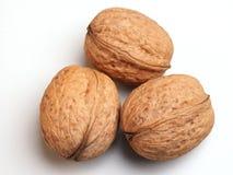 Walnuts. Three of walnuts Royalty Free Stock Images