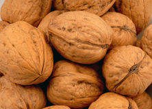 Walnuts 2. Macro photo of some Walnuts royalty free stock photos