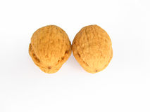 Walnuts. Two walnuts without background close-up Royalty Free Stock Images