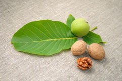 Walnuts Royalty Free Stock Photography