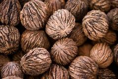 Walnuts. Organic black walnuts for sale at a local farmer's market royalty free stock photo