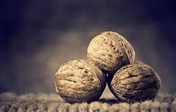Free Walnuts Stock Photo - 22478320
