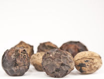 Walnuts. Raw dryed walnuts close up with dryed shell on some of them royalty free stock images