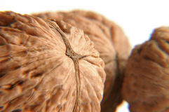 Walnuts... Walnuts on a white background Stock Photo