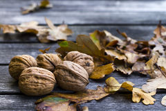 Walnuts. On old wooden table with brown leafes Stock Photography
