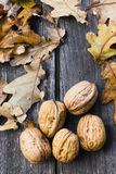 Walnuts. On old wooden table with brown leaves Royalty Free Stock Photo