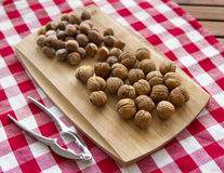 Walnuts. Group of walnuts lying on kitchen table royalty free stock photos