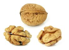 Walnuts. In closeup with white background Stock Photo
