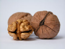 Walnuts. Close-ups of walnuts Royalty Free Stock Photo