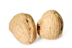 Free Walnuts Stock Images - 7491824