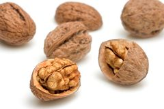 Walnuts against white background Royalty Free Stock Image
