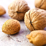 Walnuts and Almonds Stock Image