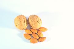 Walnuts and almonds Royalty Free Stock Photography