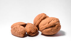 Walnuts with almonds Stock Image