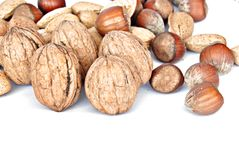 Walnuts, almonds and hazelnuts Royalty Free Stock Photos