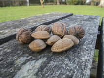 Walnuts and almonds Royalty Free Stock Photos