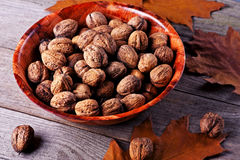 Walnuts amidst autumn leaves Stock Image
