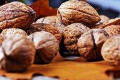 Walnuts amidst autumn leaves Stock Photo