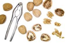 Free Walnuts And Nutcracker Stock Image - 29460731