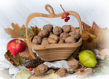 Walnuts and apples Stock Photography