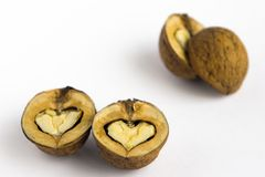Walnuts - as hearts. The split walnuts - as hearts royalty free stock photography