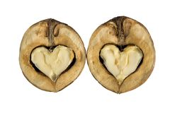 Walnuts - as hearts Stock Images
