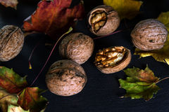 Walnuts and  autumn maple leaves. Walnuts and colorful autumn maple leaves on a black background Stock Photo