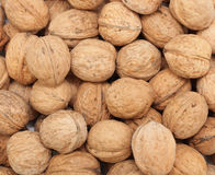 Walnuts: background Stock Image