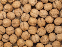 Walnuts.Background. Fotografía de archivo libre de regalías