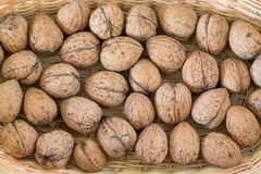 Walnuts background Royalty Free Stock Images