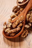 Walnuts background Stock Photography