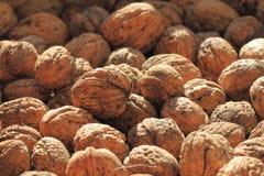 Walnuts background Royalty Free Stock Photos