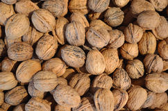 Walnuts background stock photo