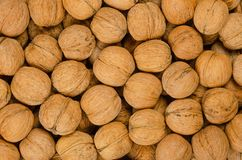 Walnuts background close up, pile of unshelled nuts royalty free stock images