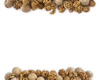 Walnuts background. Walnuts at border of image with copy space for text. Kernels walnuts on a white background. Top view royalty free stock photography